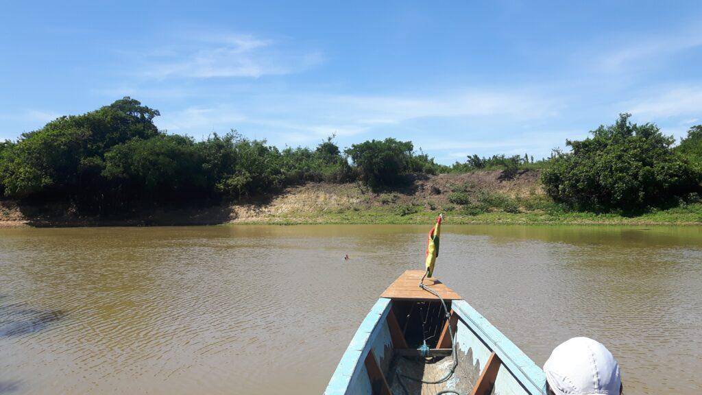 Navigazione sul rio Yacuma e avvistamento del delfino rosa