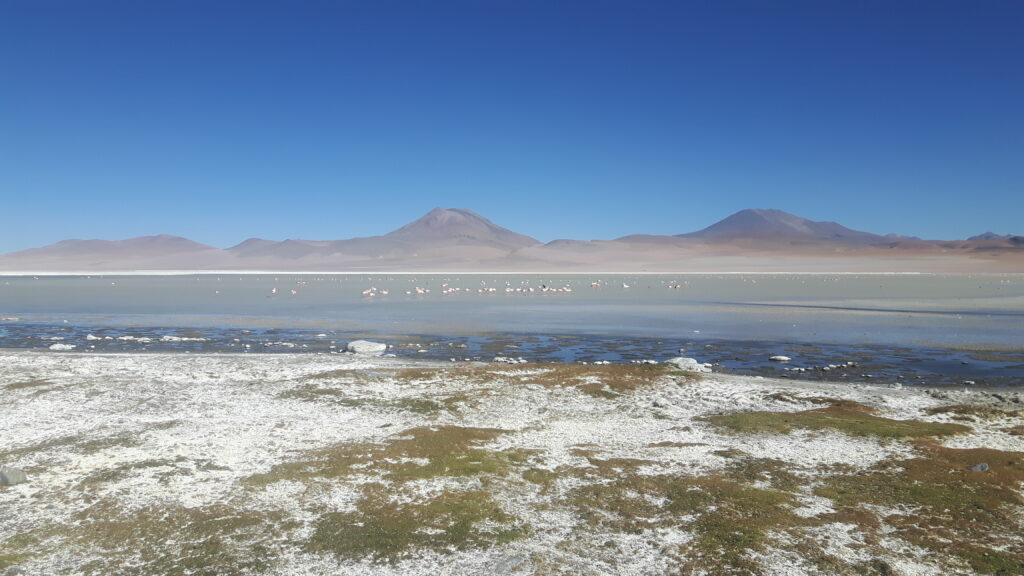 Il panorama mozzafiato nella Riserva naturale Eduardo Avaroa