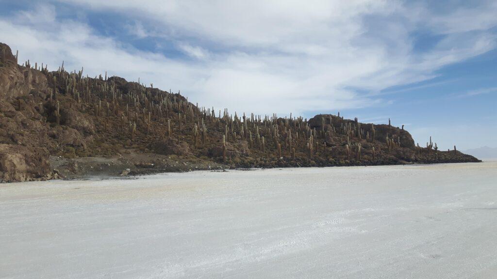 L'isola di Incahuasi e i suoi cactus